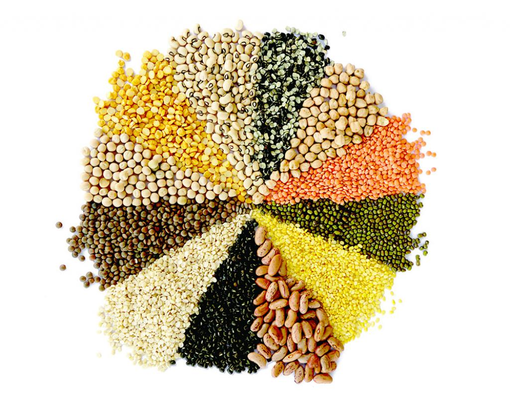 The Popular Pulses