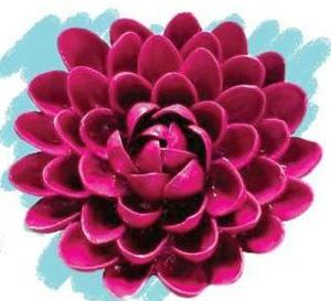 A Flower in a Nutshell