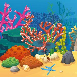 No One Killed The Corals